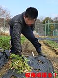 h260127_kyusyoku2.png