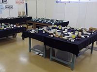 h270201-窯業01.JPG