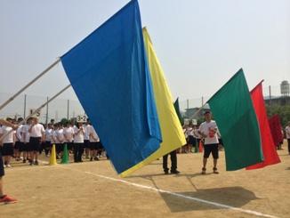 02flag (1).jpg
