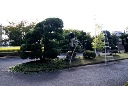 2DSC04791.JPG