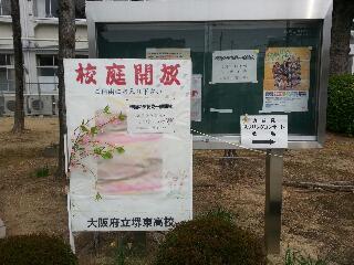 spring2013_01.jpg