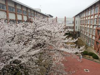 spring2013_05.jpg