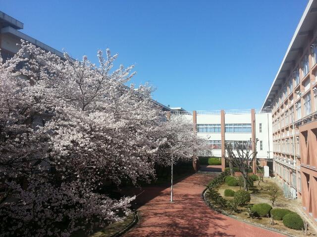 spring20140331_01.jpg