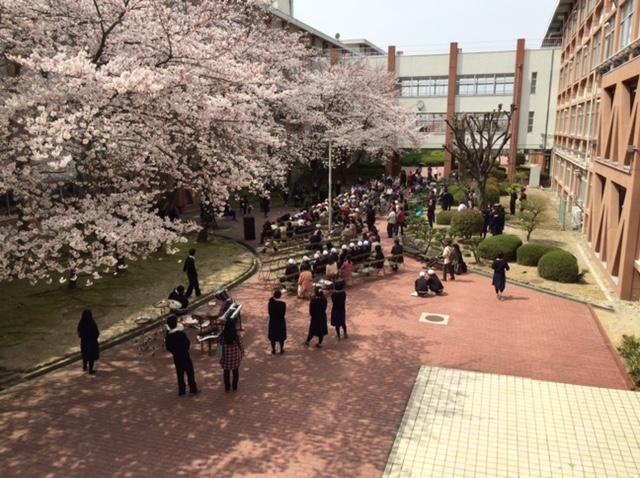 spring2016_02.JPG