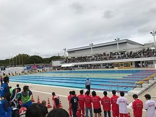 水泳近畿大会1.jpg