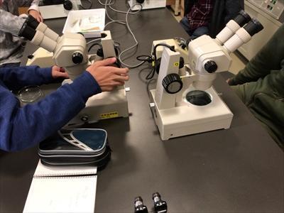 171112 顕微鏡.JPG