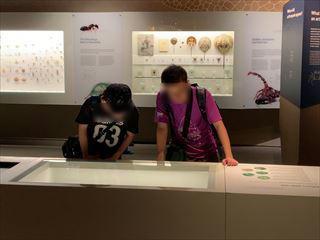 190305 LKC自然史博物館研修_R.JPG