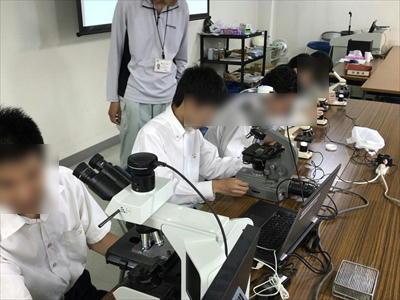 180611 顕微鏡観察1.JPG